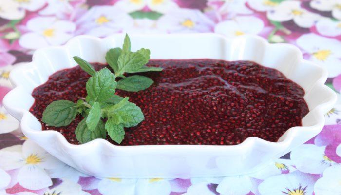 Rezept Chia Gruetze lowcarb ketogen