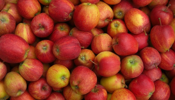 Rezept Apfelsalat mit Haehnchenstreifen